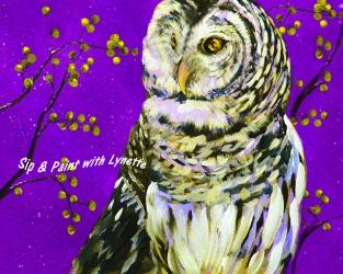 snowy-owl 1 a