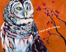 snowy-owl 2a
