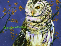Snowy-Owl Night Sky