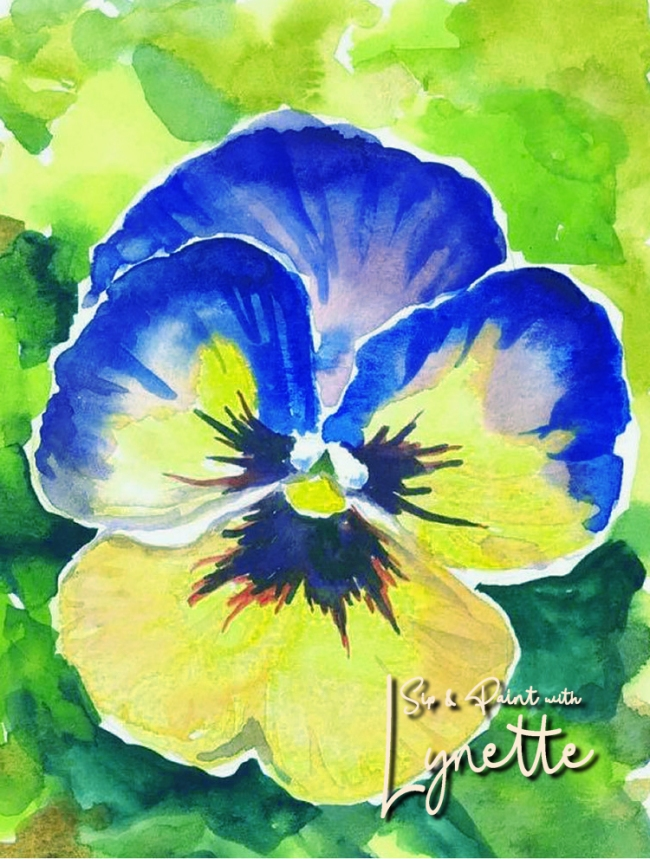 Pansy watercolour 2